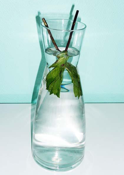 water met limoen drinken